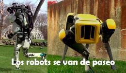 paseo robots